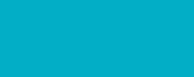 Copic Sketch Marker BG09 Blue Green - BG09 BLUE GREEN