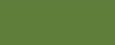 Copic Sketch Marker G99 Olive - G99 OLIVE