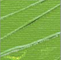 Pebeo - Pebeo Studio Akrilik Boya 500ml No:60 Chrome Green Hue