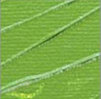 Pebeo Studio Akrilik Boya 500ml No:60 Chrome Green Hue - 60 Chrome Green Hue
