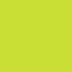 Touch - Touch Twin Marker GY48 Yellow Green