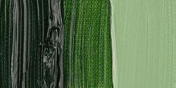Van Gogh - Van Gogh 40ml Yağlı Boya Seri:1 No:623 Sap Green