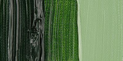 Van Gogh 40ml Yağlı Boya Seri:1 No:623 Sap Green - 623 Sap Green