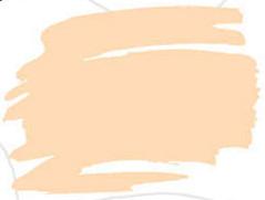 Zig Kurecolor Fine & Brush for Manga Çizim Kalemi 420 Flesh Color - 420 Flesh Color