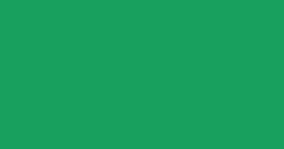 Artdeco Ebru Boyası 30ml Yeşil No:13