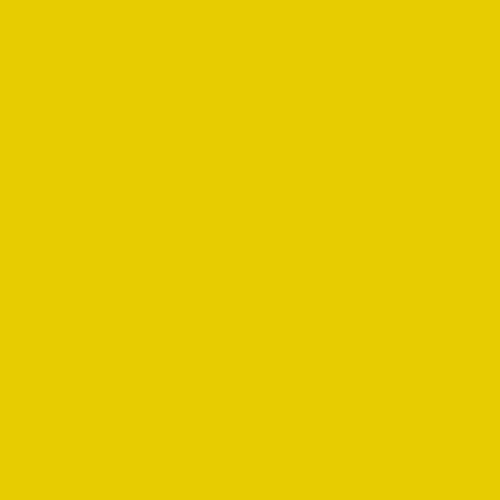 Artline Fineliner 200 0.4mm İnce Uçlu Yazı Ve Çizim Kalemi Yellow - Yellow