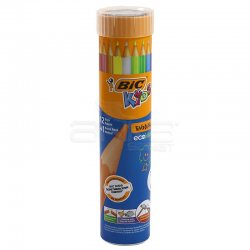 Bic - Bic Evolution Kuru Boya Kalemi 12+1 Renk Metal Tüp (1)