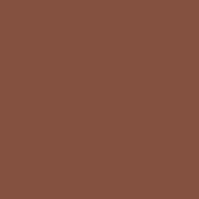 Cadence Premium Akrilik Boya 120ml 1153 Açık Kahve
