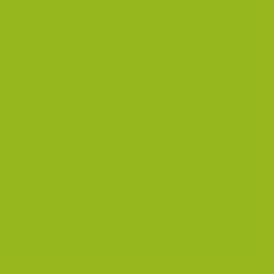 Cadence Cam ve Seramik Boyası Kivi Yeşil No:290 45ml