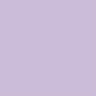 Cadence Cam ve Seramik Boyası Pastel Lila No:458 45ml