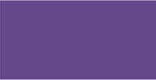 Cadence Ebru Boyası 45ml 861 Mor
