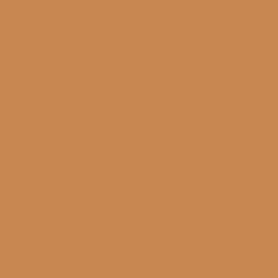 Cadence Hybrid Acrylic For Multisurfaces Tüm Yüzeyler İçin Akrilik Boya 120ml H013 Amber - H013 Amber