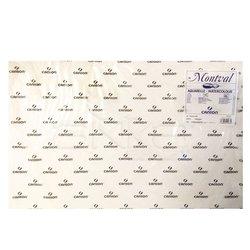 Canson Montval Sulu Boya Kağıdı Cold Pressed 300g 50x65cm 25li - Thumbnail