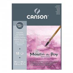 Canson Moulin du Roy Çizim Blok 300g 12 Yaprak Hot Pressed - Thumbnail