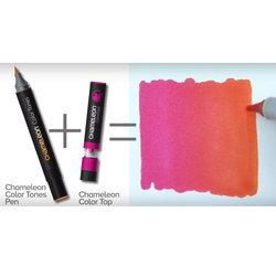 Chameleon Color Tops Marker Kalem 5li Set Nature Tones - Thumbnail
