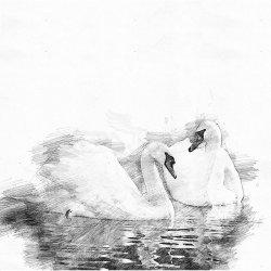 Clairefontaine Dessin a Grain İnce Dokulu Çizim Bloğu 180g 30 Yaprak - Thumbnail