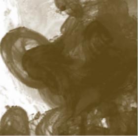 Daler Rowney FW Acrylic Artist Ink 29.5ml Cam Şişe Antelope Brown 222 - 222 Antelope Brown