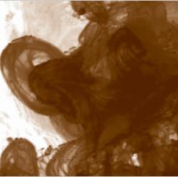 Daler Rowney - Daler Rowney FW Acrylic Artist Ink 29.5ml Cam Şişe Burnt Umber 223