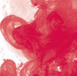 Daler Rowney - Daler Rowney FW Acrylic Artist Ink 29.5ml Cam Şişe Crimson 513