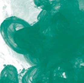 Daler Rowney FW Acrylic Artist Ink 29.5ml Cam Şişe Dark Green 326 - 326 Dark Green