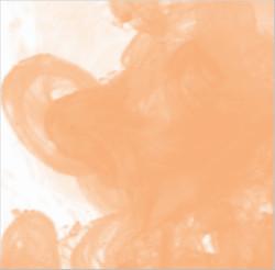 Daler Rowney - Daler Rowney FW Acrylic Artist Ink 29.5ml Cam Şişe Flesh Tint 578