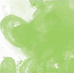 Daler Rowney - Daler Rowney FW Acrylic Artist Ink 29.5ml Cam Şişe Light Green 348