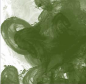 Daler Rowney FW Acrylic Artist Ink 29.5ml Cam Şişe Olive Green 363 - 363 Olive Green