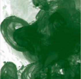 Daler Rowney FW Acrylic Artist Ink 29.5ml Cam Şişe Sap Green 375 - 375 Sap Green