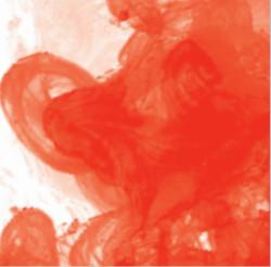 Daler Rowney - Daler Rowney FW Acrylic Artist Ink 29.5ml Cam Şişe Scarlet 567