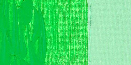 Daler Rowney Graduate Akrilik Boya 500ml 355 Leaf Green - 355 Leaf Green