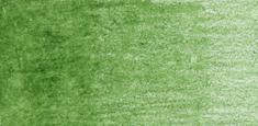 Derwent - Derwent Coloursoft Kuru Boya Kalemi Pea Green C430