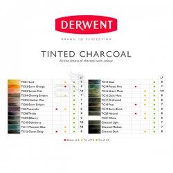 Derwent - Derwent Tinted Charcoal Sulandırılabilen Renkli Füzen Kalem 6lı Set (1)