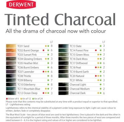 Derwent Tinted Charcoal Sulandırılabilen Renkli Füzen Kalem