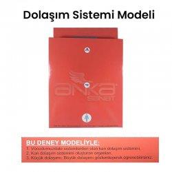 Dolaşım Sistemi Modeli - Thumbnail