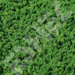 Eshel - Eshel Koyu Yeşil Sünger Paket İçi:20g (1)