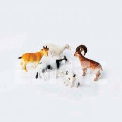 Eshel - Eshel Renkli Evcil Hayvanlar 1-200 Paket İçi:4