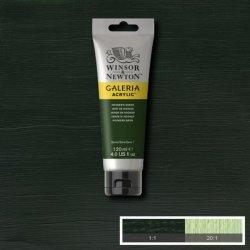 Galeria - Galeria 120ml Akrilik Boya No:311 Hookers Green