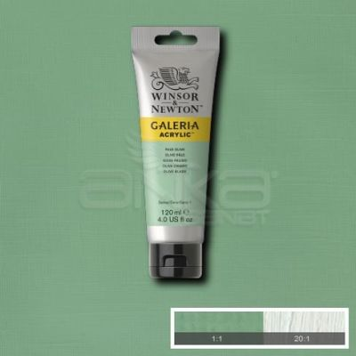 Galeria 120ml Akrilik Boya No:435 Pale Olive - 435 Pale Olive