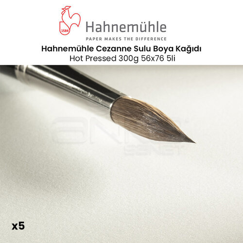 Hahnemühle Cezanne Sulu Boya Kağıdı Hot Pressed 300g 56x76 5li