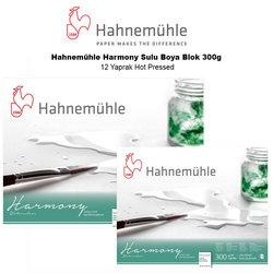 Hahnemühle - Hahnemühle Harmony Sulu Boya Blok 300g 12 Yaprak Hot Pressed