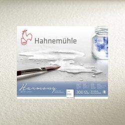 Hahnemühle - Hahnemühle Harmony Sulu Boya Kağıdı 300g 50x65cm 10lu (1)