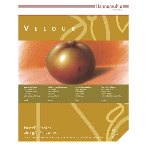 Hahnemühle Pastell Velour Blok 10 Yaprak 260 g