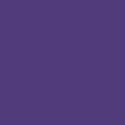 Identi Pen Çift Uçlu Kalem Purple - PURPLE