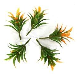 Jordania - Jordania Çiçek Maketi 4cm 5li FLA1 (1)