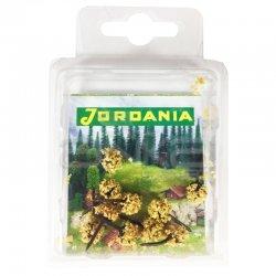 Jordania Mini Ağaç Maketi 2.5cm 10lu MN2510D - Thumbnail
