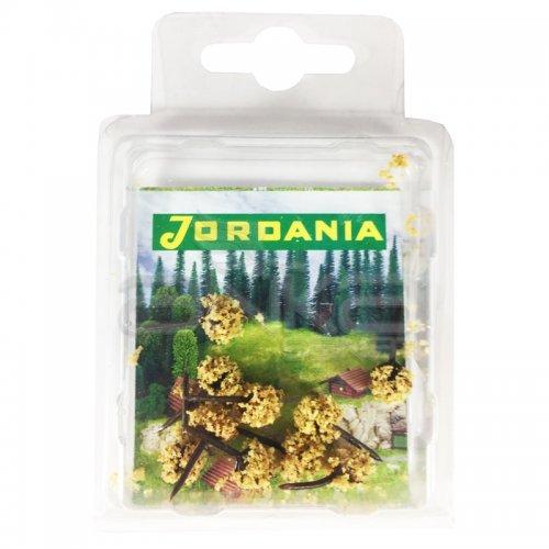 Jordania Mini Ağaç Maketi 2.5cm 10lu MN2510D
