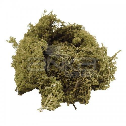 Jordania Zemin Yosunu Maketi 1116 Zeytin Yeşili