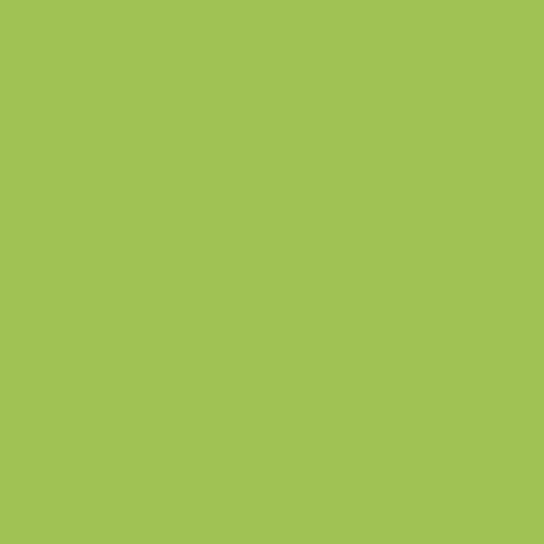 Koh-i-Noor Artist Pastel Boya Kalemi 8820/7 Permanent Green - 8820/7 Permanent Green