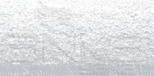 Koh-i-Noor Toison Dor Artists Toz Pastel Boya 119 Standard Silver
