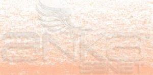 Koh-i-Noor Toison Dor Artists Toz Pastel Boya 96 Medium Flesh